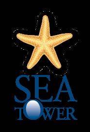 מגדלי הים מחברת רום כנרת
